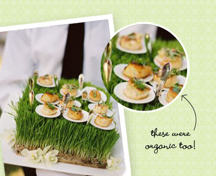 Wedding Cocktail Hour Ideas Cool Hors d 39Oeuvres Displays